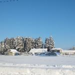 雪国の生活ぶり